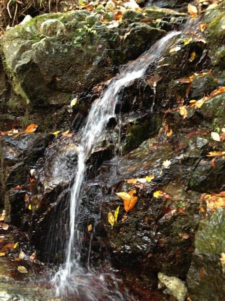 みたらい渓谷湧き水