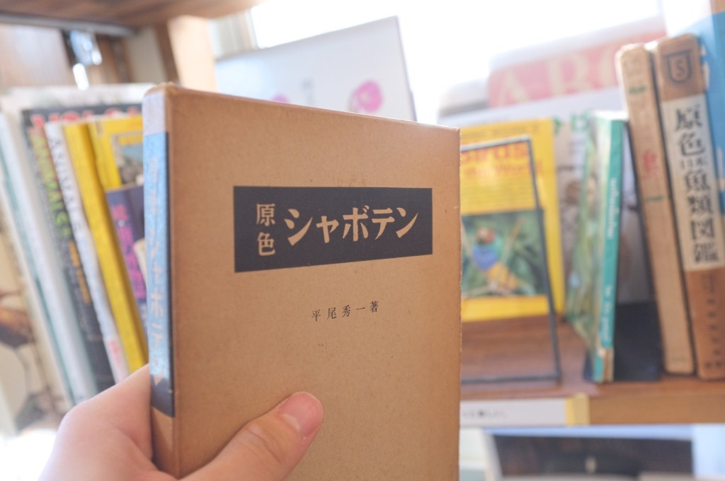 booksmobro2