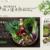 野菜提携企業「坂ノ途中」が全店ちょっとずつ赤字でも路面店を出し続ける理由。